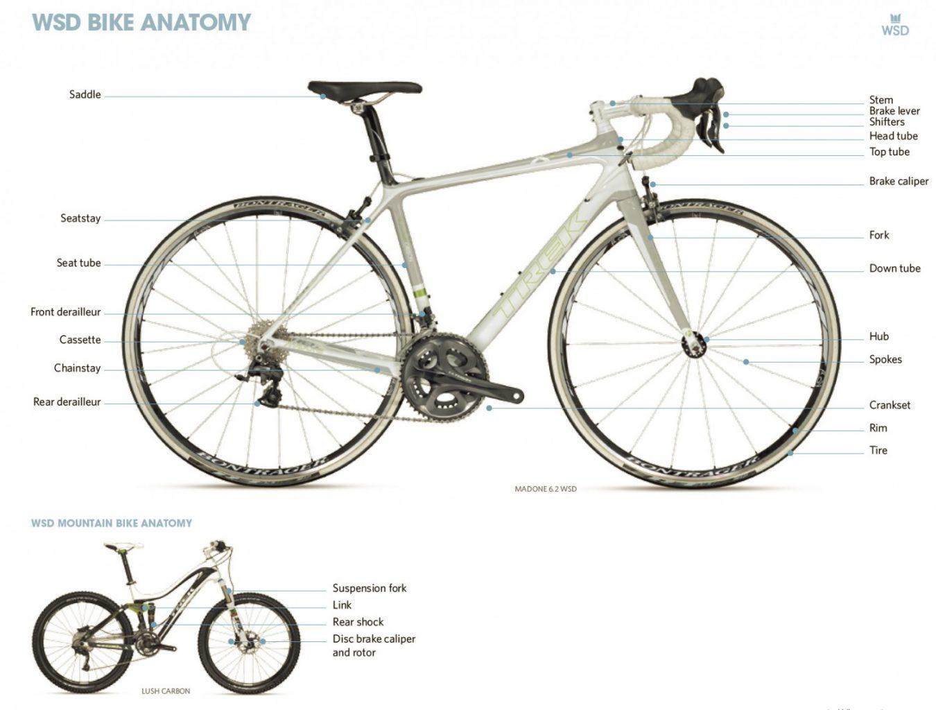Anatomy of a Bike - Women\'s Adventure Magazine