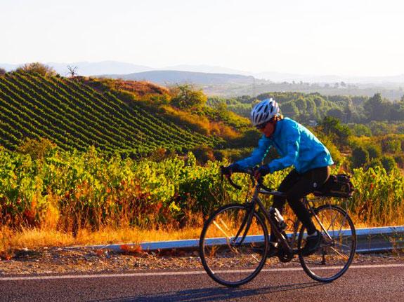 wine-valleyresize