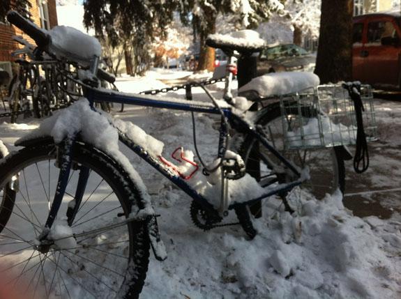 Lauren's bike covered in snow.